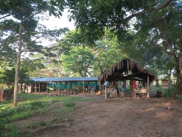 Le campement des campesinos, située juste derrière la finca ©Judith Bovard/2015