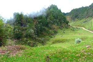 Das Land der Ixiles und ihr wichtigstes Erzeugnis - Mais