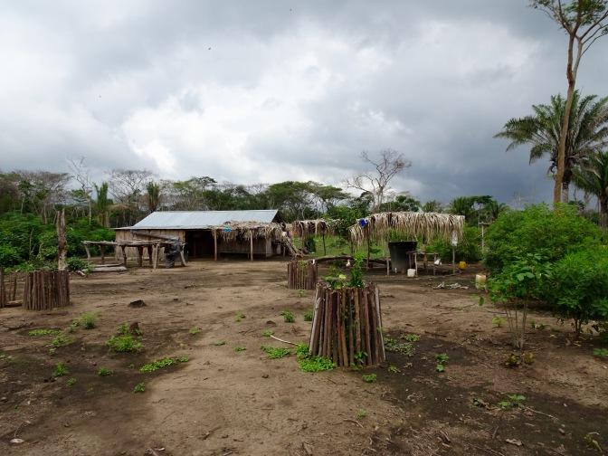 Las Pavas – Ein Hühnerzuchtprojekt und keine Neuigkeiten zum Rückkehrplan
